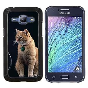 TECHCASE---Cubierta de la caja de protección para la piel dura ** Samsung Galaxy J1 J100 ** --Naranja American Shorthair gato Curl