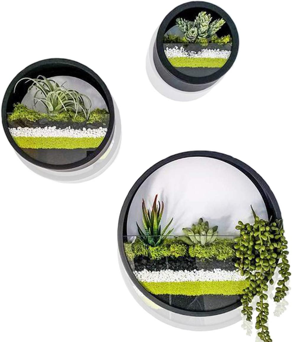 Ecosides Set of 3 Round Hanging Wall Vase Succulent Planter Vase- Metal Flower Pots, Indoor Decorative Air Plants Container Faux Plants, Cacti and More, Dark Black Color