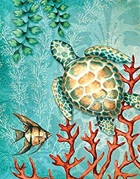 Gango Home Decor Sea Life Turquoise and Orange Under The Ocean Fish Turtle Seahorse and Coral Coastal D cor Two 8x10in Mounted Prints. Teal Orange