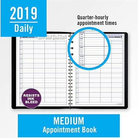 amazon com at a glance 2019 daily appointment book dayminder 8