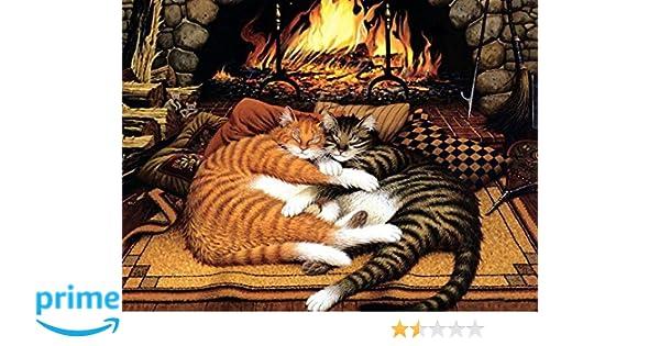 DIY Paint By Number Kits Charles Wysocki Orange Cat 16x20 inch Frameless
