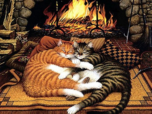 - PaintingStudio animal orange cat and black cat by Charles Wysocki DIY oil Painting by number kit 16x20 inch Frameless