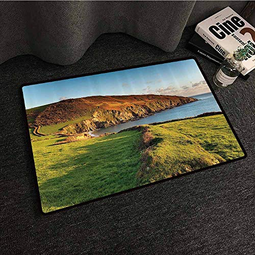(Seaside Decor Collection Pet Door mat The South West Coast Path as It Passes Hemmick Beach from Gorran Haven Cliffs Picture Quick and Easy to Clean W24 xL35 Olive Green)