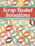 Scrap-Basket Sensations: More Great Quilts from 2 1/2″ Strips (That Patchwork Place)