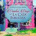 Voodoo Days at La Casa Fabulosa: An Unconventional Memoir | David Domine
