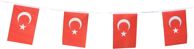 Turkey Flag Turkey Mini Banner
