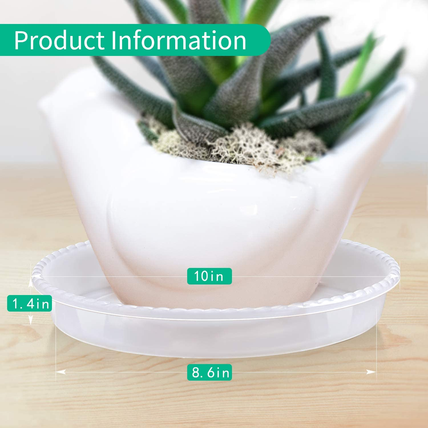 Round Plant Trays for Indoors EFFECTEER Plant Saucer 6-5 Pack Clear Plastic Plant Pot Saucers Durable Flower Pots with 5 Plant Labels 5 Pack 6 inch