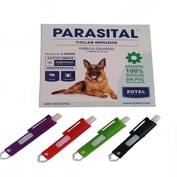 Collar anti-parásitos pulgas mosquitos para perros grandes más pinza anti-garrapatas de regalo especial contra el mosquito flebotomo y leishmaniasis ...