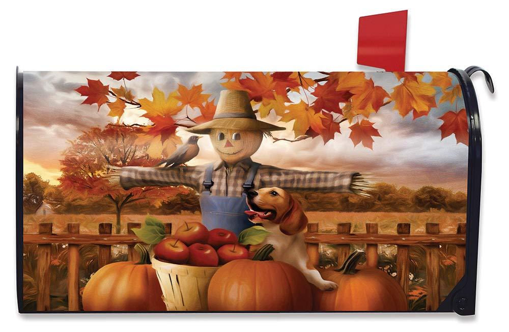 Briarwood Lane Autumn Scarecrow Harvest Magnetic Mailbox Cover Puppy Pumpkins Apple Basket by Briarwood Lane