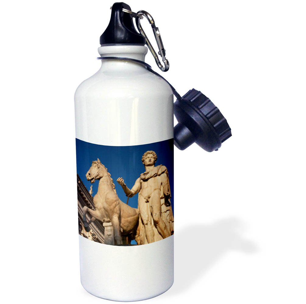 3dRose wb_257746_1 Dioscuri Castor Statue, Capitoline Hill, Rome, Italy Water Bottle