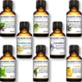 Majestic Pure Aromatherapy Essential Oils Set of Top 8, 10 ml - Pack of 8 Includes Lavender, Frankincense, Peppermint, Eucalyptus, Lemon, Clove Leaf, Cinnamon Leaf & Rosemary Oils