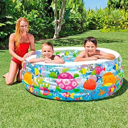 Colorbaby Piscina Hinchable Acuario - 318L: Intex: Amazon.es ...