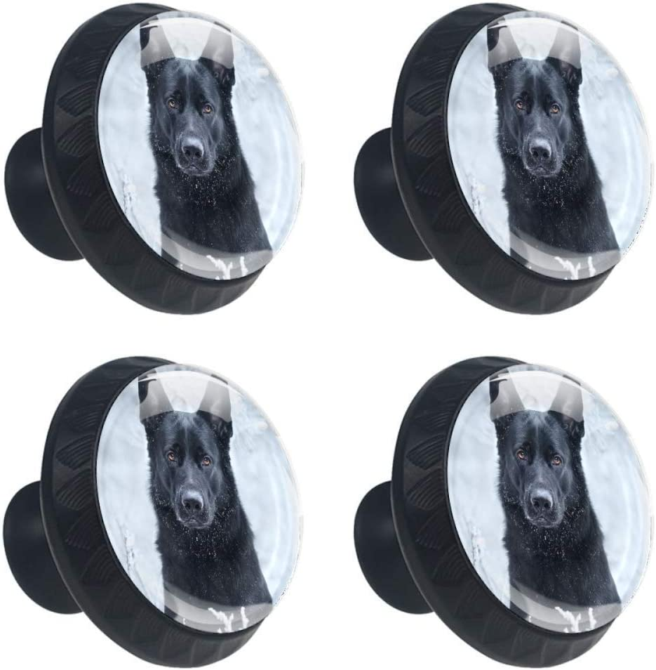 4 Pieces Set Cabinets Hardware Round Furniture Knobs Black German Shepherd in The Hoary White Nature Print,Drawer Dresser Cupboard Wardrobe Pulls Handles for Home Kitchen