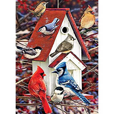 Cobblehill 80122 1000 pc Winter Birdhouse Puzzle, Various: Toys & Games