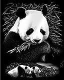 Reeves - Silver Scraperfoil Pandas