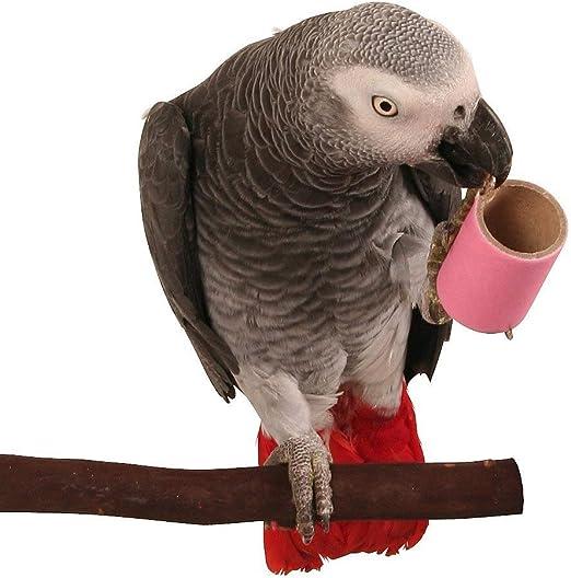 Parrot tubos – pequeño – Pack de 12: Amazon.es: Productos para mascotas