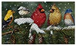 Evergreen Garden 41EM2127 Backyard Birds Floor Embossed Door Mat, Multicolor