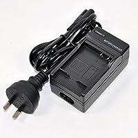 Mains/Car Single Battery Charger for Panasonic DMW-BLE9 DMW-BLE9E DMW-BLG10 DMW-BLG10E Lumix DC-TZ90 DMC-GX7 DMC-GF3 DMC-GF6 DMC-GF5K DMC-GX85 LX100 Series Camera