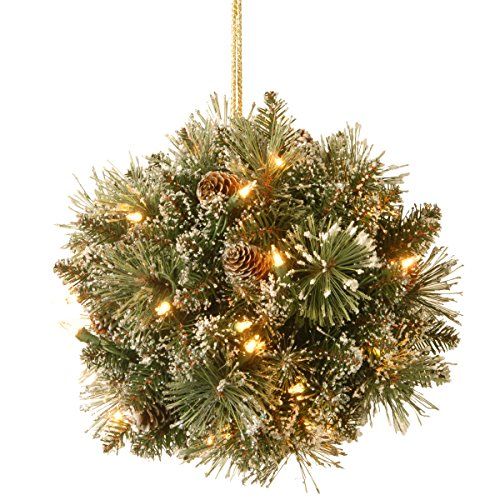 (National Tree 12 Inch Glittery Bristle Pine Kissing Ball with Pine Cones and 35 Battery Operated Warm White LED Lights (GB1-300-12K-B1))