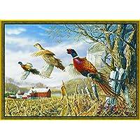 Pheasants Area Rug 37 x 52 WIlderness Wildlife Barn Farm Carpet Flooring Decor