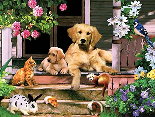 Summer on the Porch a 300-Piece Jigsaw Puzzle by Sunsout Inc.