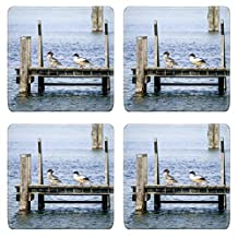 Liili Square Coasters A beautiful duck couple on a wooden jetty Photo 19313842