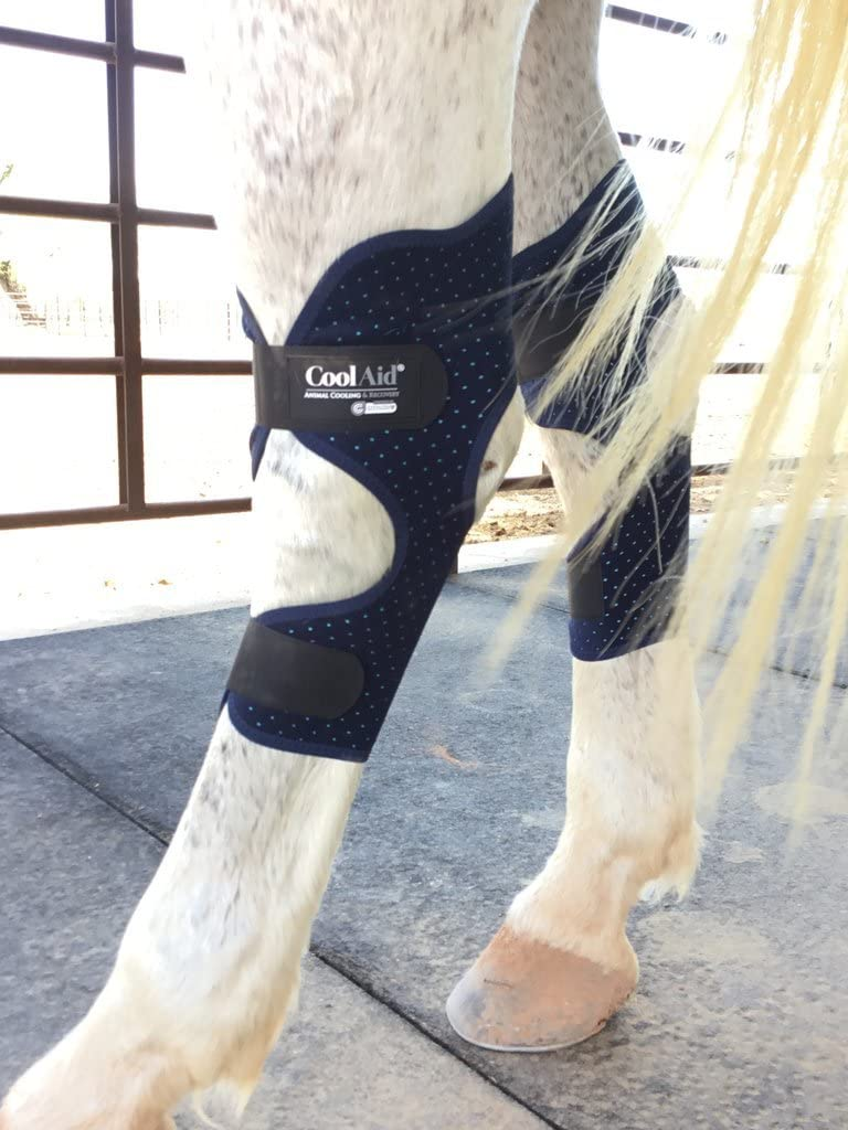Equine Icing//Cooling Therapeutic Hock Wraps for Horses