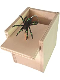 Shop Amazon.com | Decorative Boxes