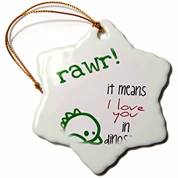 Amazon 60dRose EvaDane Funny Quotes Rawr It Means I Love Enchanting Love Snowflake Quotes
