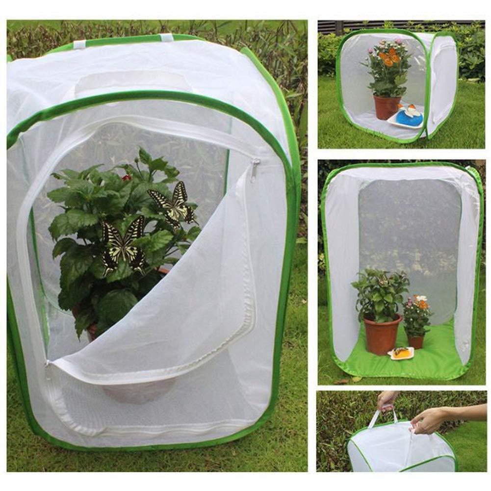 6SHINE Insect Cage Light Transmission Garden Zipper Breeding Butterfly Grasshopper Folding Seedling Incubator Handle Home Pet Net Cloth Tool Mantis S