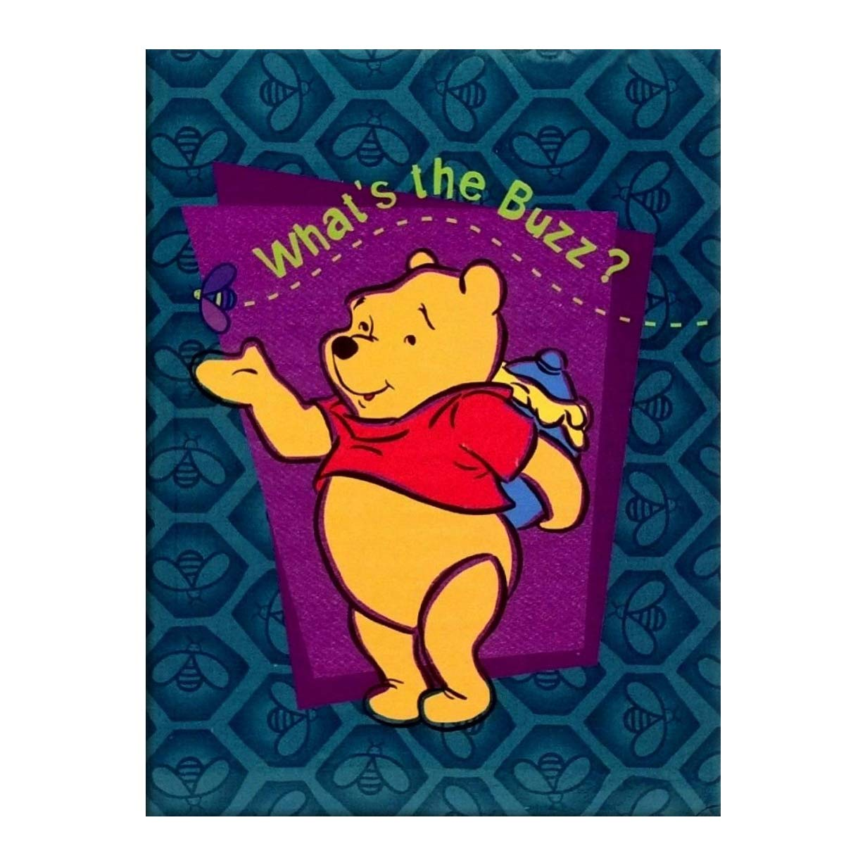 Closeoutservices Winnie the Pooh Snapshots Album - 100 4'x6' Photos - Bounce or Pounce.
