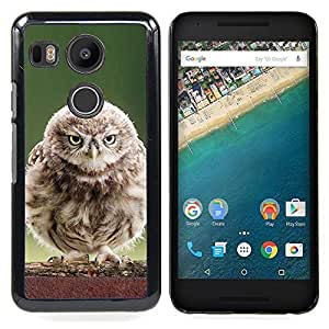 Fluffy Baby Owl Caja protectora de pl??stico duro Dise?¡Àado King Case For LG Google Nexus 5X