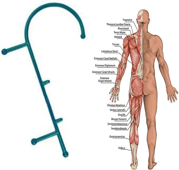 Bein Muskeln Fuß U-förmige Triggerpunkt-Massagerolle für Arm Nacken