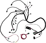 amazon com painless 60510 5 0l wiring harness automotive rh amazon com Painless LS Wiring Diagram for Dual Fans Basic Motorcycle Wiring Diagram