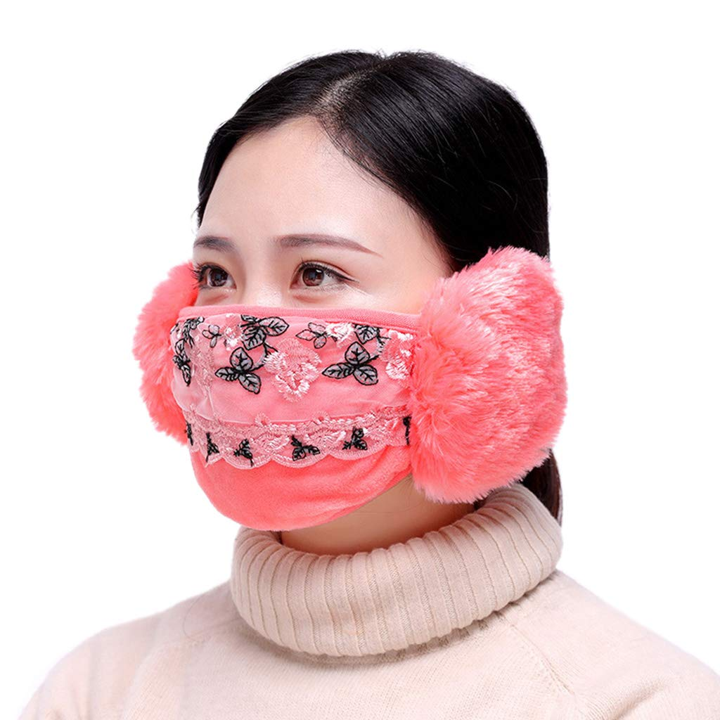 Lamdoo Winter Dustproof Mask Ear Protection And Keep Warm Two-In-One Mask Mouth Mask 2018 2018、Gift, Gift Box— Brown Gift Box-Brown