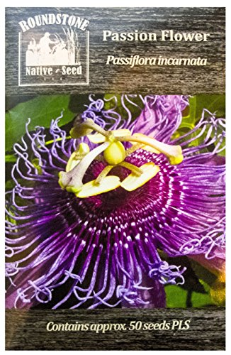(Passion Flower (Passiflora incarnata), Seed Packet, True Native Seed )