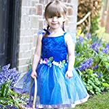 Best World Book Day Costumes - Girls Blue Flower Fairy Fancy Dress Childrens World Review
