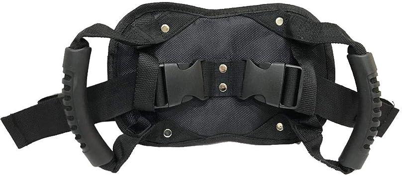Schildeng Motorrad Sozius Haltegriffe Sicherheitsgurt Rücksitz Beifahrer Griff Haltegriff Rutschfester Gurt Für Motorrad Auto