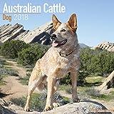 Australian Cattle Dog Calendar - Dog Breed Calendars - 2017 - 2018 wall Calendars - 16 Month by Avonside