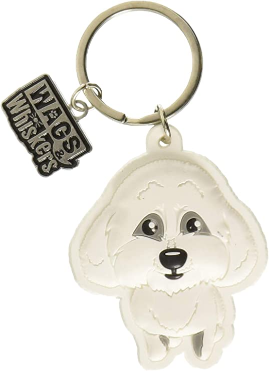 Havanese New Dog fridge magnets New Gift Free UK p//p