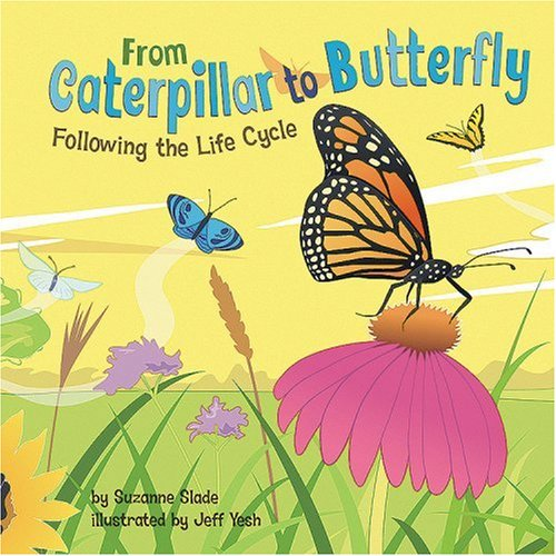 From Caterpillar to Butterfly: Following the Life Cycle (Amazing Science: Life Cycles)