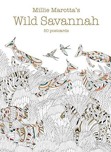 wild savannah coloring pages - millie marotta s wild savannah postcard box