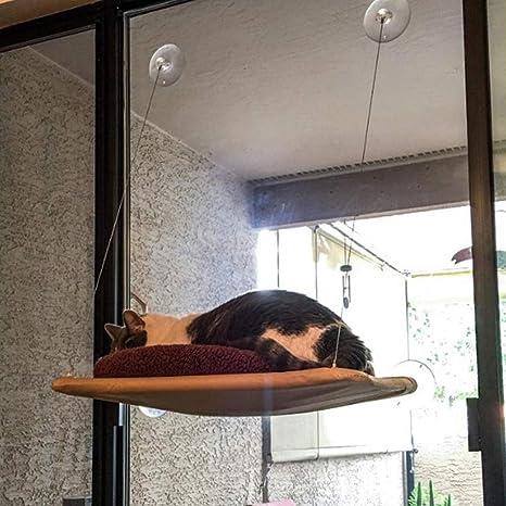 JHion Hamaca de Ventana para Gato, extraíble para la casa ...
