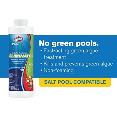 Clorox Pool&Spa Green Algae Eliminator, 1-Quart 42032CLX