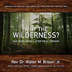 Why the Wilderness?: God Sends Angels After We Go Through! | Rev. Dr. Walter Brown Jr.