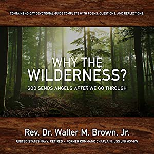 Why the Wilderness? Audiobook