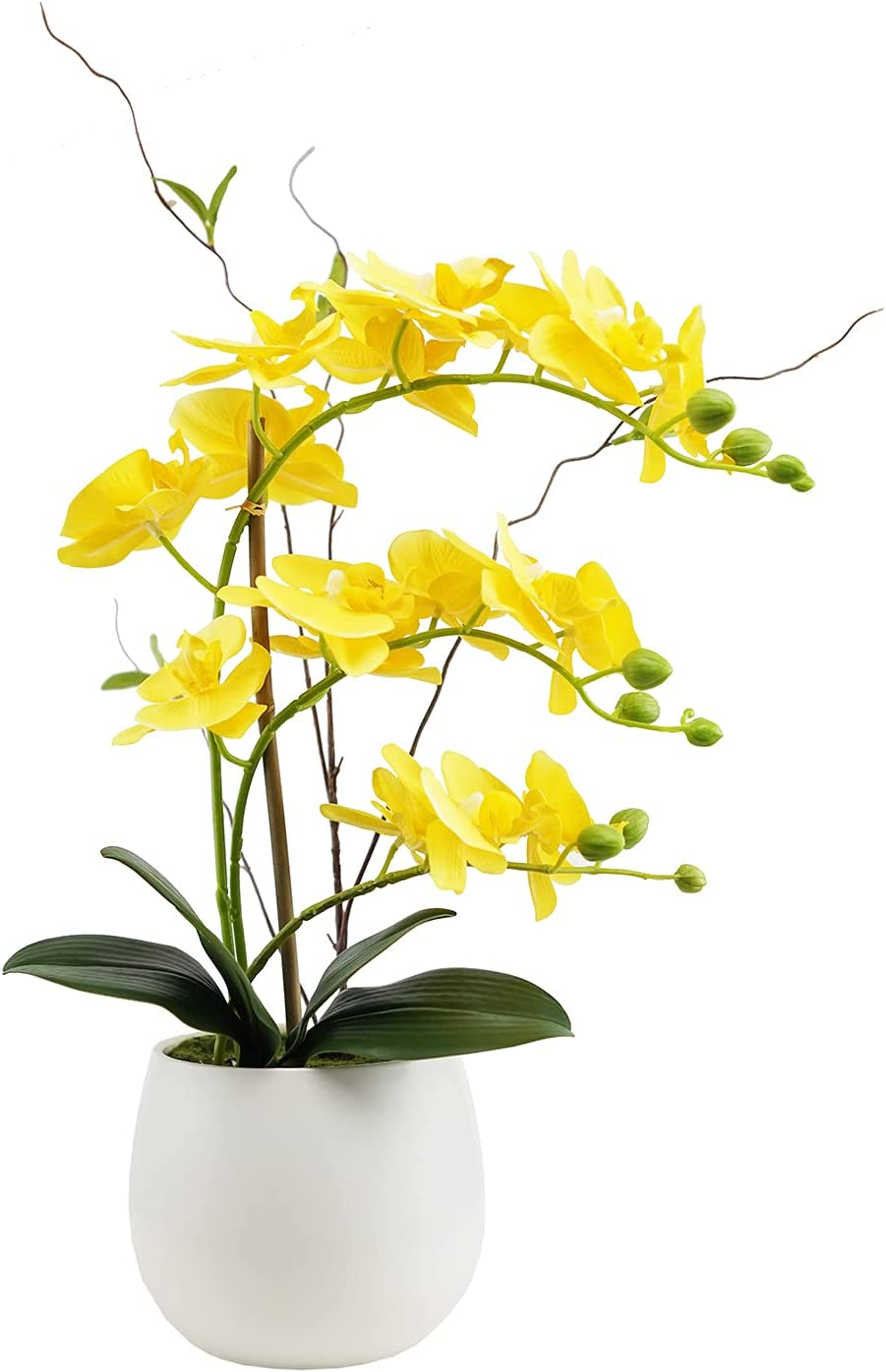 Artificial Orchid Flower Arrangements Artificial in Vase Phalaenopsis Yellow Flowers, Fake Orchids Artificial Plants Faux Flowers for Decoration Home Office Party Table Decor
