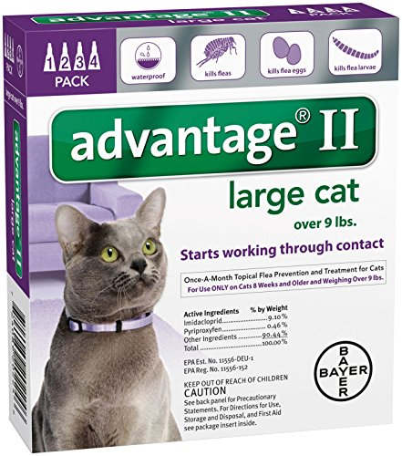 Advantage II Large Cat 4-Pack by Bayer Animal Health (Image #1)