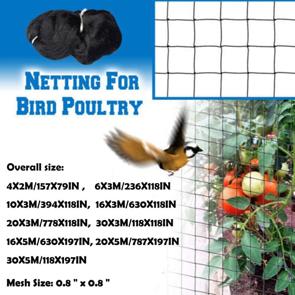 Plastic Wire Chicken Aviary Fence Net LAIYYI Anti Bird Netting Reusable Garden Plant Protect Netting for Fruit Trees//Vegetables//Flowers//Seedling