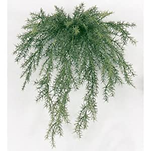 "SilksAreForever 20"" UV-Proof Outdoor Artificial Sprengeri Fern Hanging Plant -Green (pack of 12) 104"